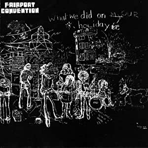 What We Did on Our Holidays [VINYL]