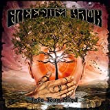 Songtexte von Freedom Hawk - Into Your Mind
