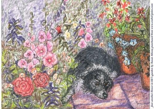 Feuille A4 pour confection de carte de vœux - Just another flower in life's garden par Susan Alison