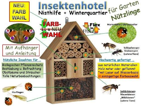 Insektenhotel KOMPLETT mit Schmetterlingshaus XXL