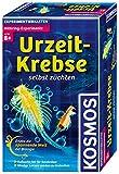 Kosmos 659219 - Experimentierset Urzeit-Krebse Bild