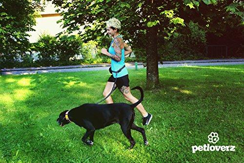 Hunde Joggingleine/Laufleine mit verstellbarem Hüftgurt | Leine zum handfreien Laufen/Fahrrad fahren | elastische Bungee Leine mit Reflektoren für Hunde bis 60kg | zusätzliche Tasche für Handy und Schlüssel etc. | Nylon | schwarz | super zum Laufen, Joggen, Wandern und Gassi gehen – PETLOVERZ® - 6