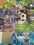 Geschenkpapier, Motiv: Fußball / Pokal, 2 Bögen und 1 Geschenkanhänger (AWU)
