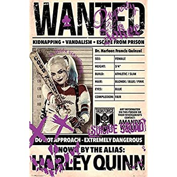 Amazon De Poster Suicide Squad Joker And Harley Quinn