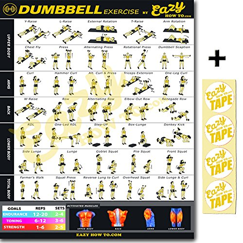 Dumbbell Exercise Workout – Fitness Planners