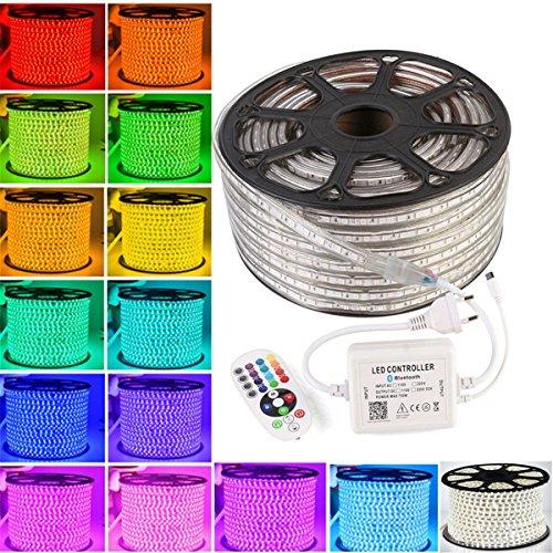 GreenSun LED Lighting 20M RGB strip mit 24 Taste IR Bluetooth Kontroller Lichterschlauch Lichtschlauch Lichterkette Schlauch Leiste IP65 60leds / m wasserdichte Weihnachts Streifen Licht 220V