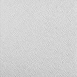 Tilestyl TPDZVIEDY Pannelli per Soffitti in Polistirolo, Bianco