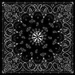 باندانا فاخرة من ZANheadgear ، 100% قطن, Black Paisley, 12 x 6 x 1.9 Inch