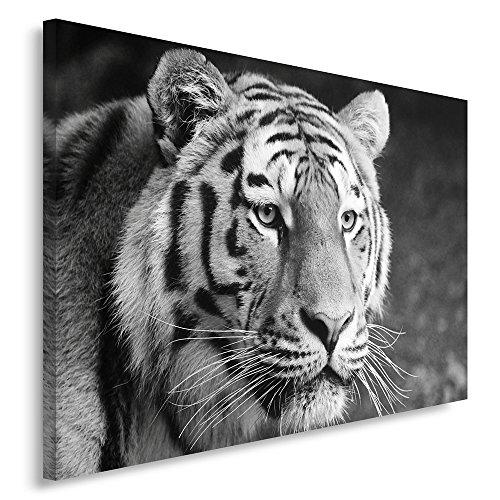Feeby. Wandbild - 1 Teilig - 50x70 cm, Leinwand Bild Leinwandbilder Bilder Wandbilder Kunstdruck, TIGER, NATUR, SCHWARZ-WEIß
