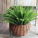 MingXiao Green Fake Plants Floral Decor Artificial Persian Leaves Erba Giardino Fiorito