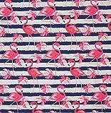Baumwoll Jersey Luke Flamingos dunkelblau