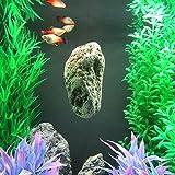 Orbit 73660 Schwimmender Stein Natur small, Schwebender Stein, Avatar Stein, Floating Rock, Bimsstein, Dekorationsfelsen, S