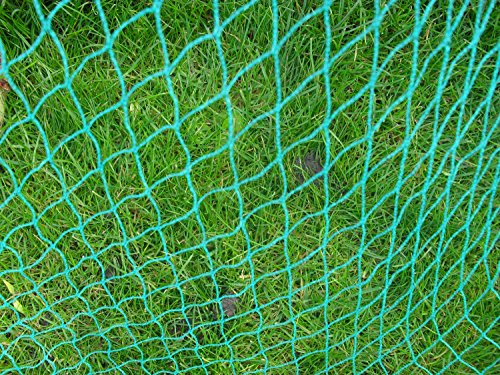 Filet anti oiseaux 2 m x 25 m