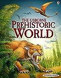 Prehistoric World (Usborne World History) by Jane Bingham (2012-01-01)