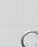 Wandpaneel Wandplatte WallFace 10053 3D QUAD Quadrat Dekor Design selbstklebend silber   2,60 qm