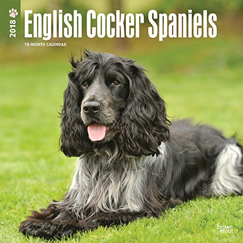 English Cocker Spaniels 2018 Wall Calendar por BrownTrout Publishers