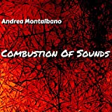 Combustion of Sounds