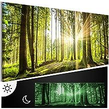 murando - Leinwand Bilder nachtleuchtend 120x40 cm - Tag & Nacht Wandbilder - Premium - Bilder 3D nachleuchtende Farben - Kunstdruck - Vlies Leinwand XXL - Fertig Aufgespannt - Wald c-B-0077-ag-a