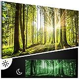 murando - Leinwand Bilder nachtleuchtend 135x45 cm - Tag & Nacht Wandbilder - Premium - Bilder 3D nachleuchtende Farben - Kunstdruck - Vlies Leinwand XXL - Fertig Aufgespannt - Wald c-B-0077-ag-a