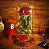 Stoff Rote Rose in Glaskuppel Asommet Led - Leuchten Angeregt mit Dem Hölzernen Brau Basis fallen, für die Einrichtung Hochzeit Dekorationen und Als Geschenk Verpackt für Valentines Tag Oder Muttertag