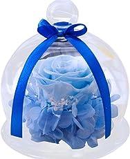 Creative Glas Cover Rosen Blumen, mamum Home Decor Endless erhalten Rosen Blume in Glas Romantisches Geschenk Geburtstag