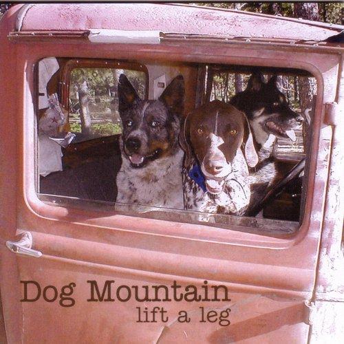 lift a leg