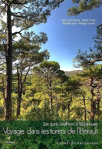 Voyage dans les forêts de l'Hérault : De Saint-Guilhem à l'Espinouse