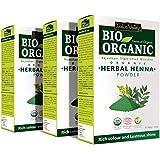 INDUS VALLEY Bio Organic Herbal Henna Powder - (Pack of 3)