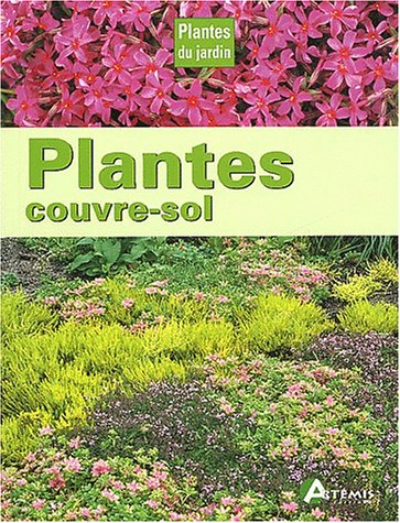Plantes couvre-sol