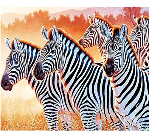 (5D DIY Voll Runde Diamant Mosaik Diamant Stickerei Tier Zebra Handwerk Geschenk Diamant Malerei Kreuzstich Gemälde 40 * 50 cm Rahmenlos)