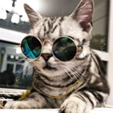 Pets Empire Pet Cat Dog Fashion Sunglasses UV Sun Glasses Eye Protection Wear-1 Piece Color May Vary