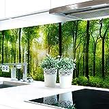 Küchenrückwand Waldlichtung Premium Hart-PVC 0,4 mm selbstklebend 400x60cm