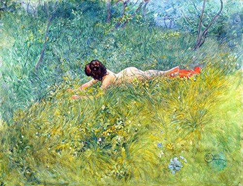 Kunstdruck/Poster: Carl Larsson Im Gras - I gröngraset - hochwertiger Druck, Bild, Kunstposter, 90x70 cm -