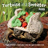 Tortoise in a Sweater 2018: 16-Month Calendar September 2017 through December 2018 (Calendars 2018)