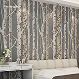 Blooming Wall 60030 Birke Baum Tapete Wand Wandbild Papier Wallcoverings, 20,8 in * 32,8 Ft = 57 SQ FT/Rolle, Dark Coffee/Brown, 20.5