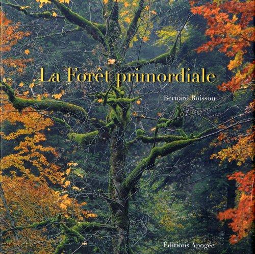 La forêt primordiale par Bernard Boisson
