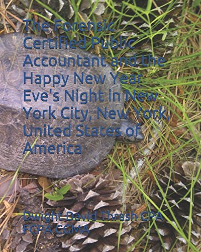 The Forensic Certified Public Accountant and the Happy New Year Eve's Night in New York City, New York, United States of America (Year Happy Eve New)