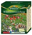 Wildblumenmischung NEU von Quedlinburger - Du und dein Garten