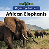African Elephants (Migrating Animals)