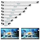 SolarNovo 18-92cm LED Aquarium-Licht Unterwasser BeleuchtungAufsatzleuchte IP68 Abdeckung Wasserdicht LED Lampe Stecker EU für Fisch Tank mit Fernbedienung RGB Farbwechsel (1.8 * 71cm, Weiß & Blau)