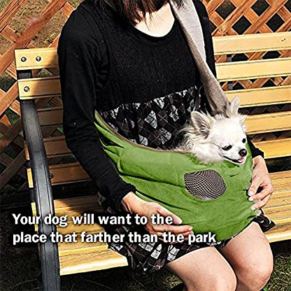 Shoulder Carry Handbag for Pets - AntEuro Portable Hands-free Pet Foldable Travel Carrier Bag, Sling Shoulder Bag for… 9