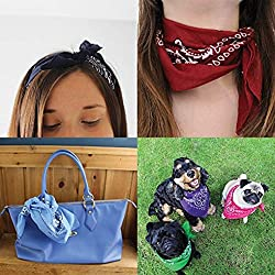 Samidy 6 Piece Cotton Paisley Western Style Headband Bandanna Set Scarf Set for Women, Men and Children Bandannas for Neckerchief, Bags, Dogs and Fashion Accessories (Random) by Samidy