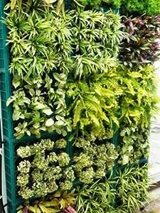 Vertiflower® Pflanzenwand Green Vertikal Garten