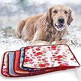 xueyan& Riscaldamento dell'animale domestico coperta del cane di coperta gatto di riscaldamento termostato speciale impermeabile padiglione del kennel dell'animale domestico, 40*40cm, random