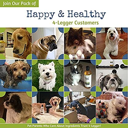 4-Legger® Certified Organic Dog Shampoo - All Natural, Hypoallergenic with Aloe - Lemongrass, Biodegradable, Non-Toxic… 9