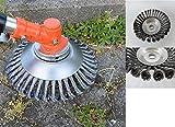 ! PROFI ! Unkrautbürste Wildkrautbürste MOTORSENSE 25,4 x 200 mm. Hohe Standfestigkeit durch HSS Stahlborsten ! Leicht zu montieren.
