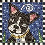 Mosaico Kit, 20x20 cm, Cane