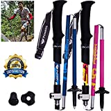 Lysport Tri-Fold Carbon Fiber Trekking Pole Climbing Stick - Folding Telescopic Collapsible Adjustable and Ultralight for Outdoor Walking Hiking Backpacking and Snowshoeing-1 Piece (Rose)