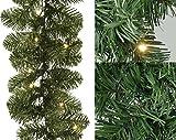 Kaemingk 691065 Tannengirlande, Soft Nadel PVC, außen, Außentrafo, 40 warmweiße LED, Länge 270 cm