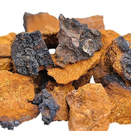 Antioxidative Orac-wert (Chaga Vital Chaga Pilz aus Lappland (Finnland) - Große Brocken aus Wildsammlung - 25 Gramm (6-Wochen-Kur))